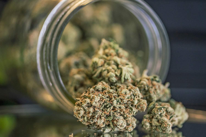 Buy Marijuana From Canada